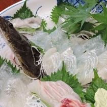 *【夕食一例】旬の魚のお造り