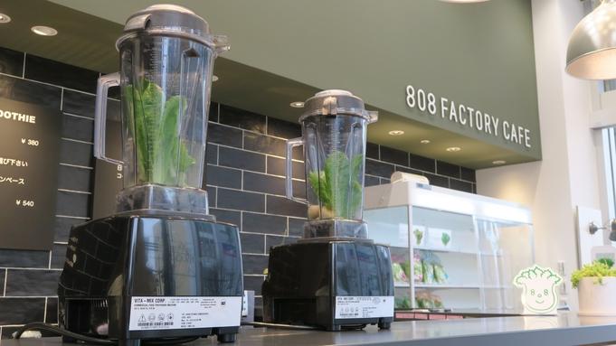 ビジネス応援【808FACTORY CAFEの野菜ジュース】付 プラン