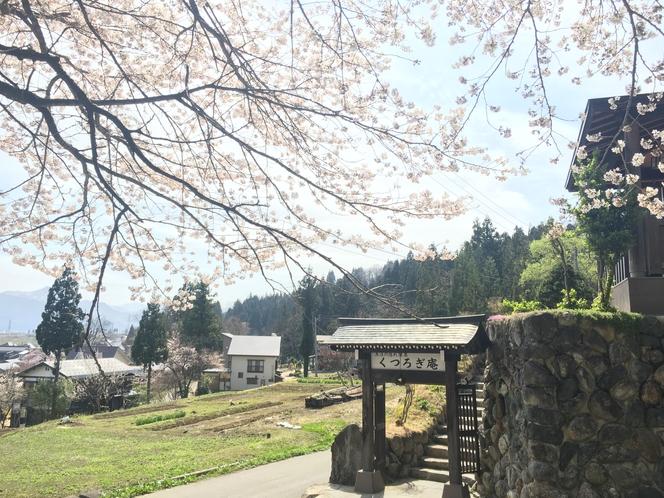 門の前には満開の桜