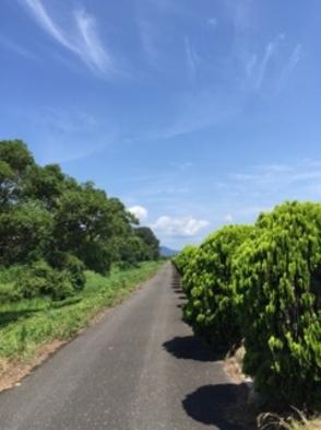【サイクリング応援!】滋賀・びわ湖周遊!サイクリングプラン【1泊2食付】
