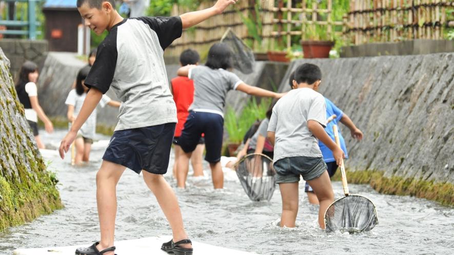・当施設より徒歩5分の針江大川では、いかだ遊びや魚捕りなどもお楽しみいただけます