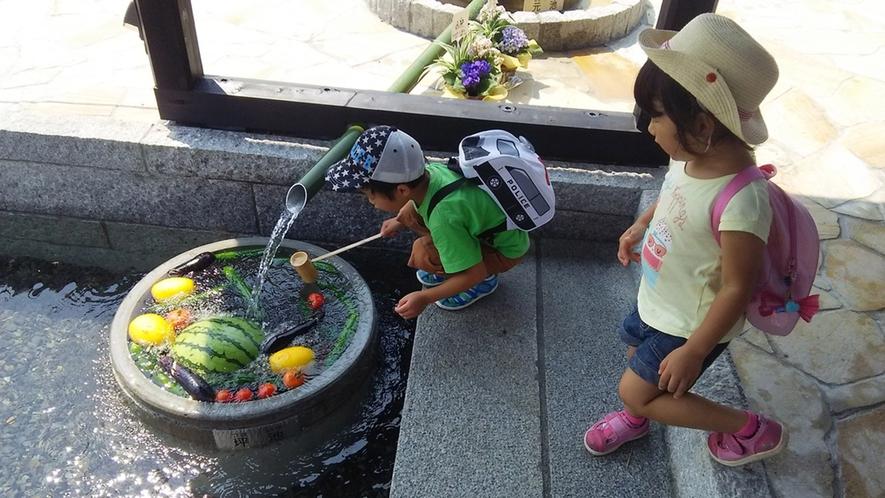 ・針江の「かばた」で野菜や果物を冷やす体験もできます