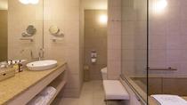 デラックススイート コートヤードビュー バスルーム