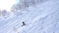 パウダーガイド スキーやスノーボード