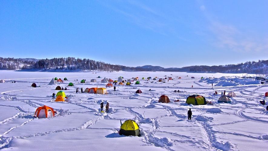 *【ワカサギ釣り】真っ白な湖の上に色とりどりのテントが並ぶ光景は、冬の風物詩!