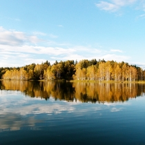 *【周辺】鏡のような湖面に映る色づいた白樺。