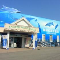越前松島水族館目の前です☆