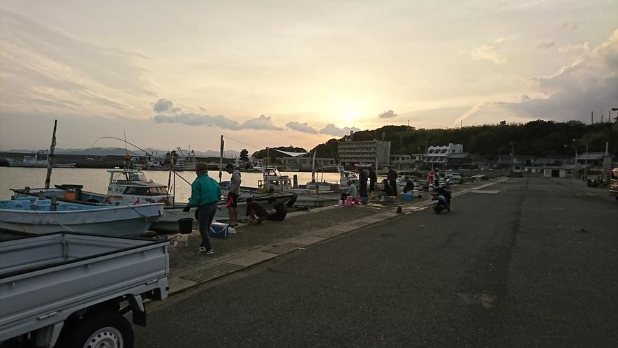 丸山漁港で釣り