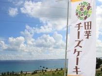 カフェレストラン長楽では金武町の特産で人気の田芋(ターム)ケーキもお召し上がりいただけます(別途有料