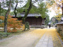 秋の聖福寺