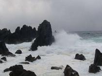 冬日本海ー海が荒れると波の華が見れるかも!