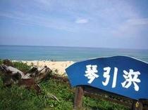 鳴き砂で有名な琴引浜は当館から徒歩すぐ!