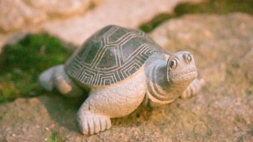 ・中庭に馴染む亀の置物