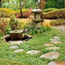 <庭園がより魅力的にリニューアル>新たに設けられた飛び石の小道から、四季折々のの植物や風景をお楽しみ