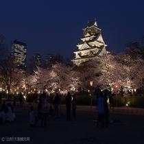 大阪観光スポット:大阪城のライトアップ