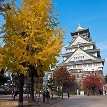 大阪観光スポット:大阪城、秋、紅葉