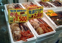 寺泊・新鮮な地魚の直売店!(魚のアメ横)
