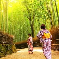 嵐山、竹林を散策