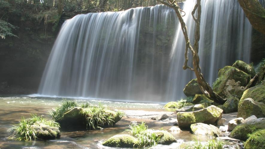 「鍋ケ滝」は滝を裏側から眺めることができるのが特徴です。