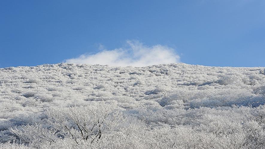 牧ノ戸峠はやまなみハイウェイで最も高所に位置する峠です。季節によって様々な景色をお楽しみいただけます