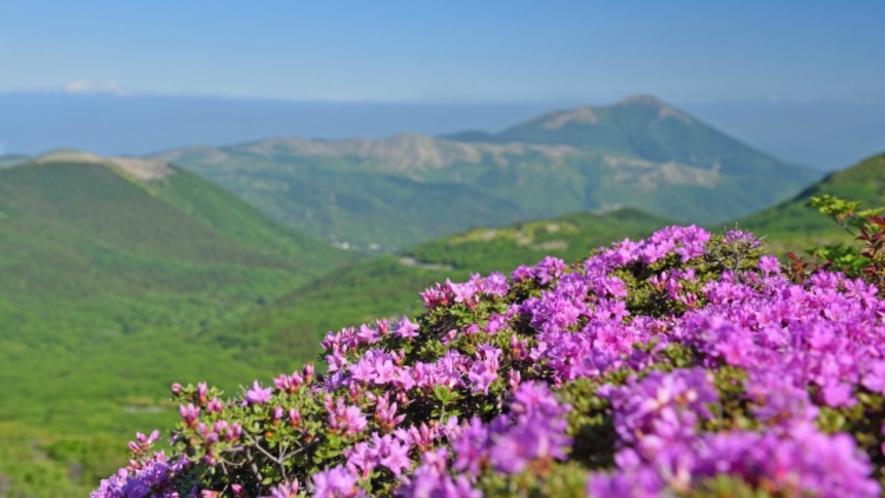 玖珠郡九重町から竹田市北部にかけて広がる「くじゅう連山」。