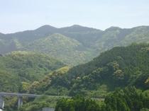 【周辺】大江天主堂から撮影した国道