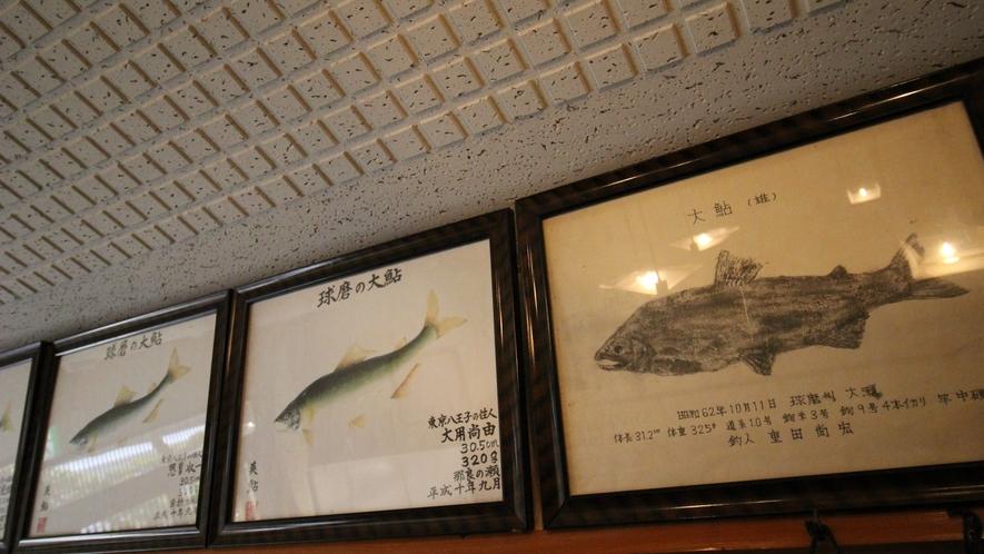館内にはこれまでの球磨川で釣れた大きな鮎の魚拓が並びます。
