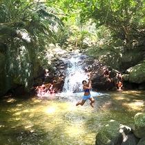 *石垣島の大自然/ジャングルの中の天然プールで野生に戻ってターザンごっこ!