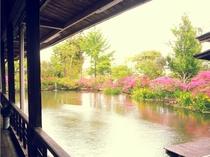 熊本県平成の名水百選の湧水池