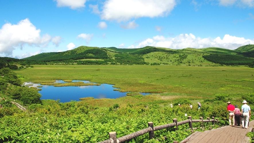 ★夏の八島ヶ原湿原