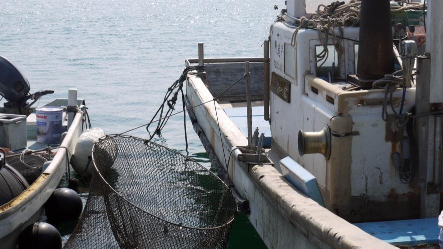素材 海から直送