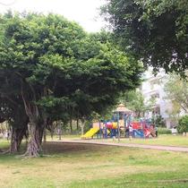 【緑が丘公園】休日には遊具で遊ぶ家族連れの姿が沢山。