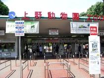 上野動物園 秋葉原駅からJR線で上野駅まで約5分