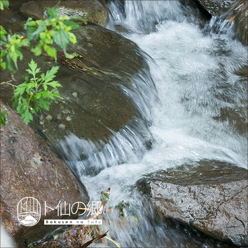 【周辺の風景】 川