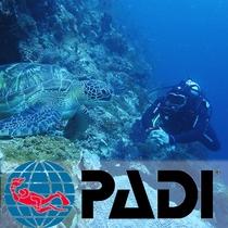 ◆PADIダイビングプランで各種ライセンスを取ることも可能です◆