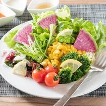 有機JAS認定の野菜を使用したサラダ