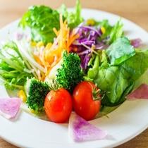 【定食屋「米どころん」朝食】 スーパーホテル自慢の有機JAS認定の野菜を使用したサラダ