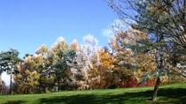 *周辺/小諸高原ゴルフ場(秋~初冬)季節によって違う景色の中でお楽しみいただけます。