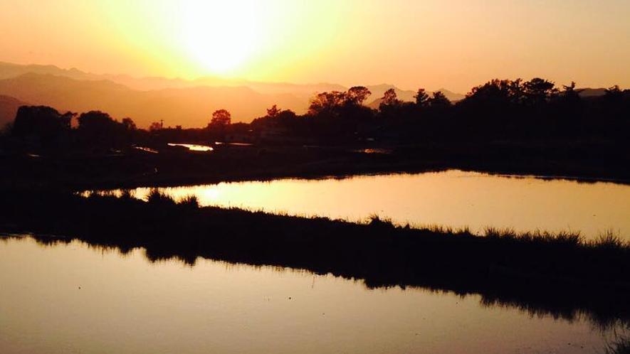 *周辺/田んぼ。水面に写った夕日がなんとも綺麗です。