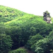 *周辺/山の風景。緑に囲まれて美味しい空気に癒されよう。