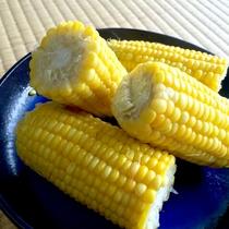 *夕食/四季折々の大地の恵みをご用意しております。