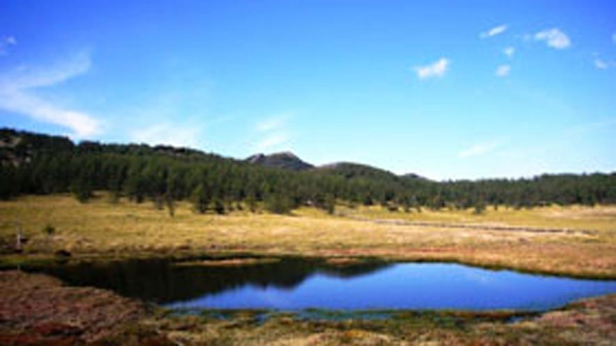 *周辺/水面に写る空が美しい。池ノ平湿原。