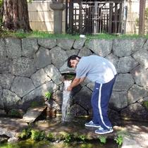 *周辺/自然が多いため、きれいな水が流れています。