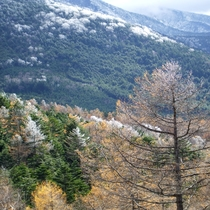 *周辺/季節ごとに移り変わる山の景色をお楽しみください。