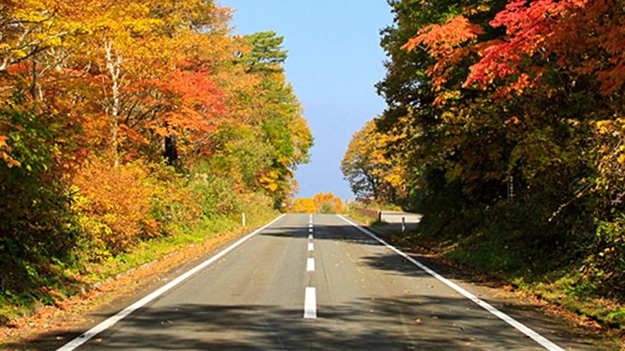【秋の磐梯山ゴールドライン】お車やオートバイでのドライブにオススメです。