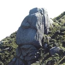【大自然】宮之浦岳《モアイ岩》