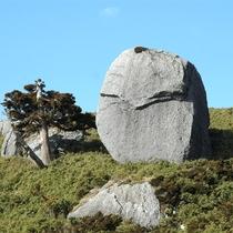 【大自然】人面岩