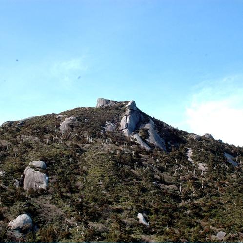 【大自然】九州百名山の一つに選定されている《黒味岳(くろみだけ)》