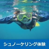 ■《熱帯魚&黒潮の魚&ウミガメ&珊瑚と出会う☆シュノーケーリング体験ツアー[6/1~10/31]》プ