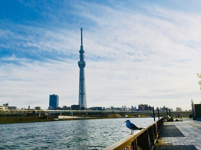 ホテルからも見える東京スカイツリー。隅田川沿いにレンタル自転車でのお出かけがおすすめ!